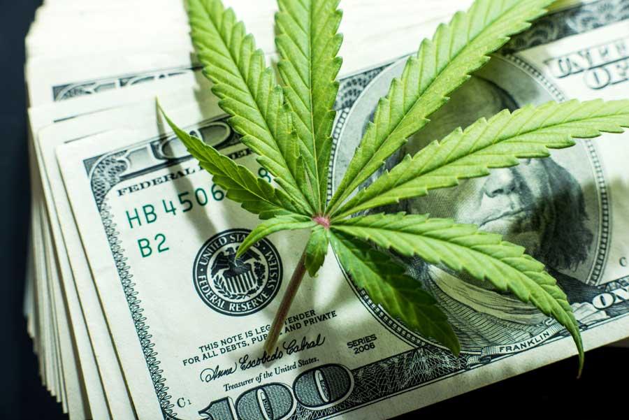 5 Qualities that Every Legit Source of Marijuana News Should Have