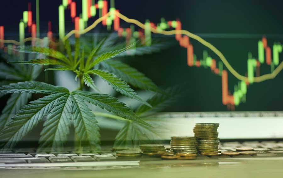 Do's and Don'ts in the Marijuana Stocks Industry