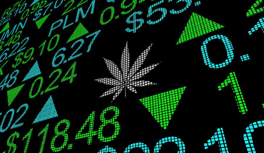 Where Will Marijuana Stocks Be One Year From Now?